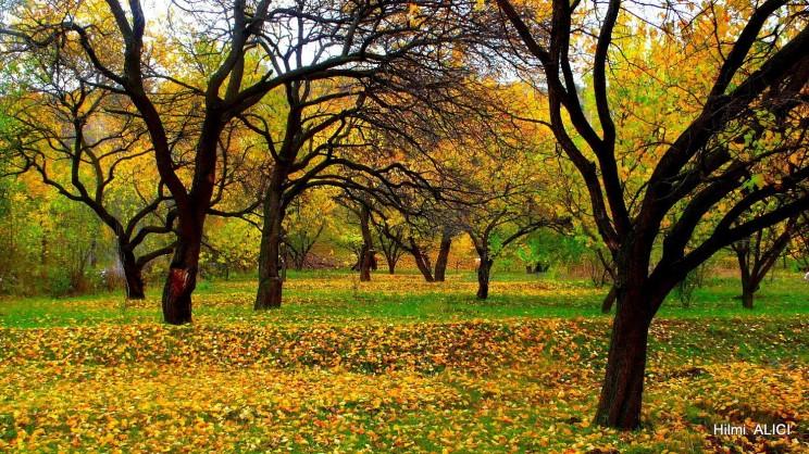 Günaydın Mutlu İnsanlar. Sonbaharda Kağızman. Hilmi ALICI